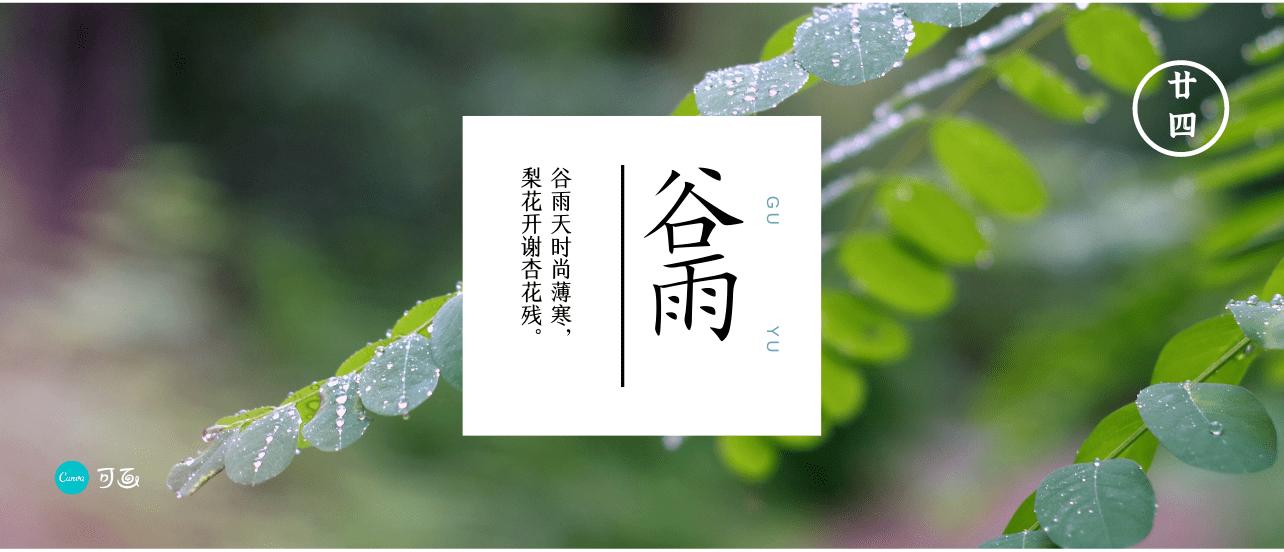 谷雨社交媒体