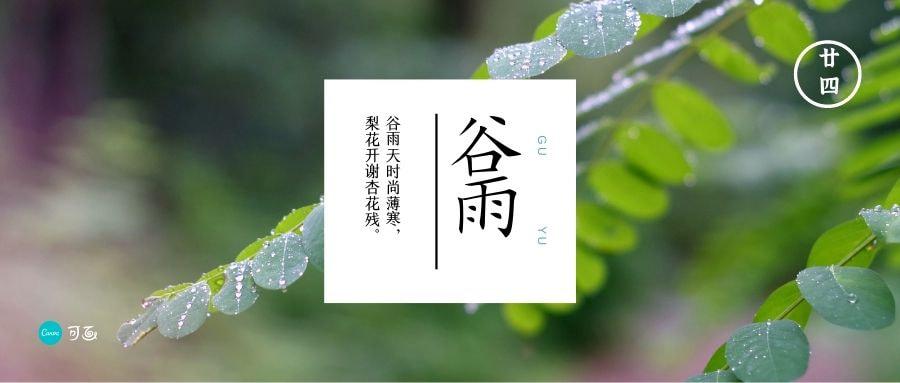 谷雨微信公众号封面