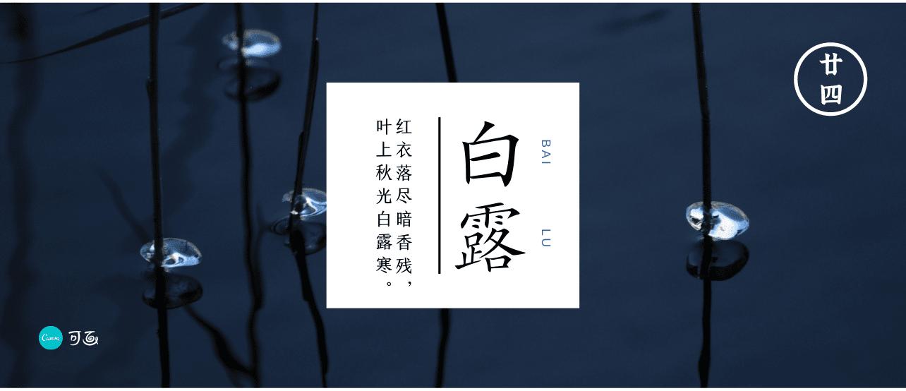 白露节气丨秋凉渐至,露凝而白